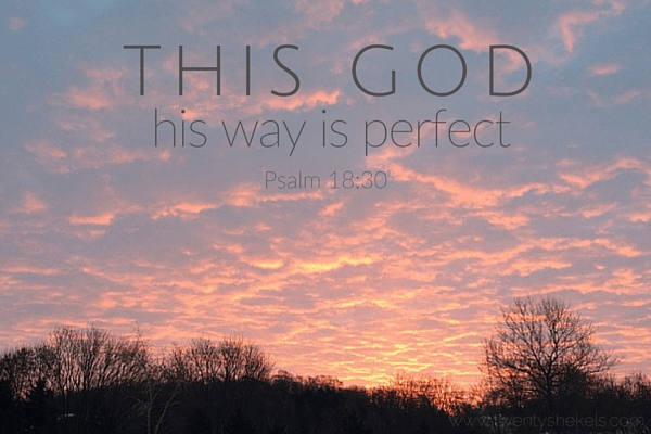 This God—his way is perfect Psalm 18-30 (1)