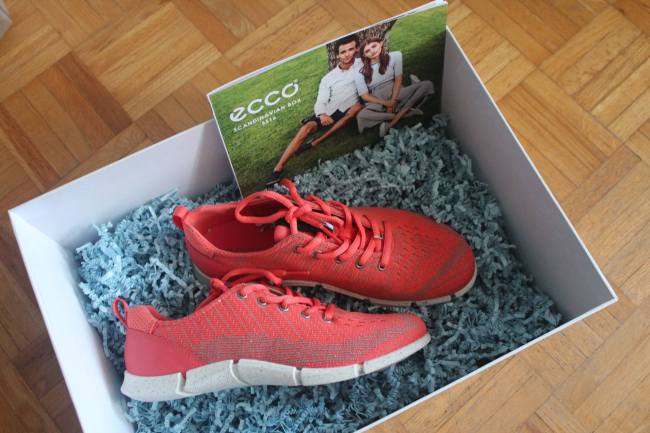 ECCO INTRINSIC - 4