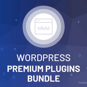 Buy WordPress Premium Plugins Bundle