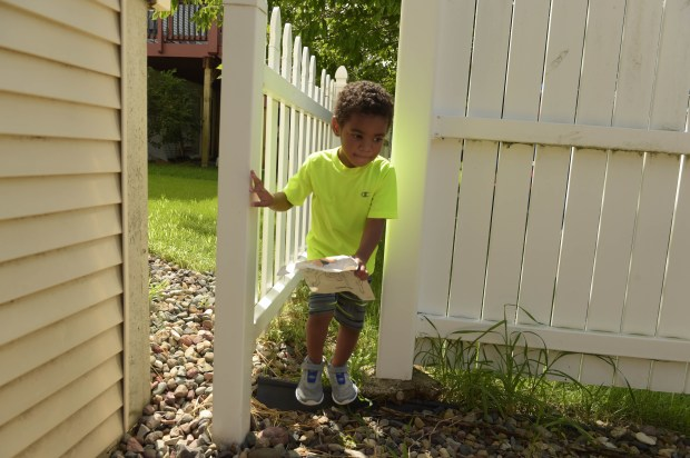 Brandon Brundidge, 4, plays in the yard, going past a gap between the house and the fence in his Cottage Grove back yard, Thursday, August 11, 2016. Lions Club members will replace an old fence in Shelette Brundidge's back yard which is falling apart, Thursday, August 11, 2016. Holes and gaps in the fence allow her three autistic children, when not constantly supervised, to wander off into trouble. (Pioneer Press: Scott Takushi)
