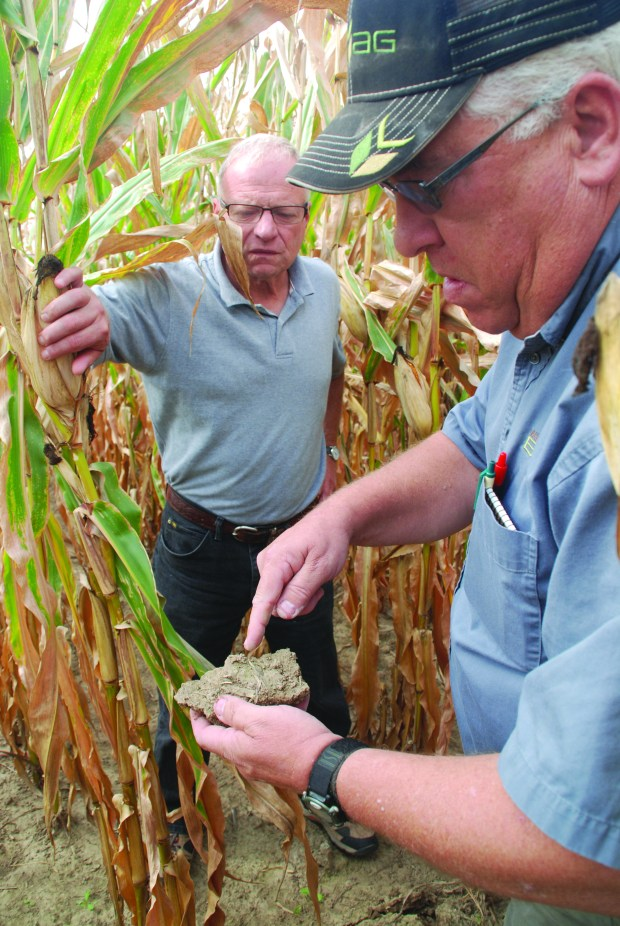 In this undated photo, Midwestern BioAg consultant Mike Lovlien, left, looks at soil in a cornfield on customer Tom ScarponciniÕs farm in Ruthford, Minn. The McKnight Foundation, of Minneapolis, just invested $2.5 million in the Madison, Wis.-based fertilizer company with the goal of making a profit for its endowment, and at the same time improving water quality in the Mississippi River by expanding farm practices that use less nitrogen and phosphorous inputs. Increasingly, foundations like McKnight are using their endowment investment choices as another way to advance their missions. Photo courtesy of Midwestern BioAg: Jan Shepel.