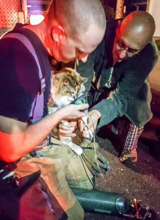 A member of the Duluth Fire Department gives oxygen to a cat belonging to Shirley Reierson and Jim Gruba at the scene of a house fire on Park Point Thursday night. (Courtesy photo)