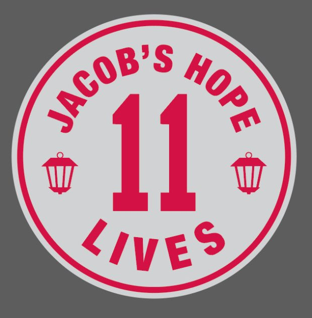This tribute by the Minnesota Twins to Jacob Wetterling's life will remain on the outfield wall at Target Field for the rest of the 2016 season. (Courtesy of Twins)