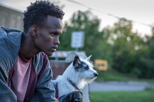 """The title of """"A Stray"""" refers to both of the main characters in the film: a man named Adan (Barkhard Abdirahman) and a dog named Laila (Ayla). (IFP Screen Forward)"""