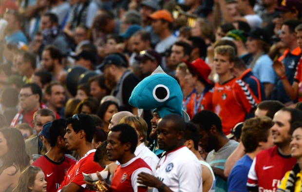 A fan in a fish costume watches as the Minnesota United FC takes on Swansea City AFC in the second half of a soccer friendly match at the National Sports Center Stadium in Blaine, Saturday, July 19, 2014. The Loons beat Swansea City AFC, 2-0. (Pioneer Press: John Autey)