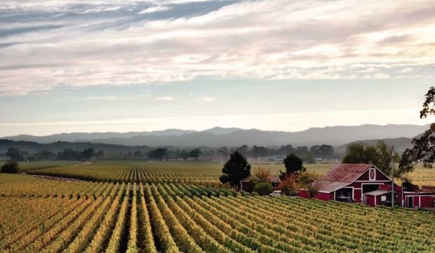 The Sonoma Valley in California. (Courtesy photo)