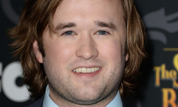 "LOS ANGELES, CA - JANUARY 07: Actor Haley Joel Osment attends the screening of IFC's ""The Spoils Of Babylon"" at DGA Theater on January 7, 2014 in Los Angeles, California. (Photo by Frazer Harrison/Getty Images)"