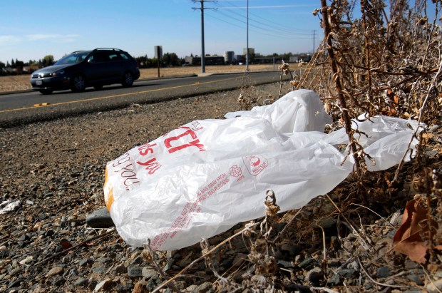 FILE - In this Oct. 25, 2013, file photo, a plastic bag sits along a roadside in Sacramento, Calif. California voters are considering a November 2016 referendum that would uphold or overturn a statewide ban on single-use plastic carryout bags. (AP Photo/Rich Pedroncelli, File)
