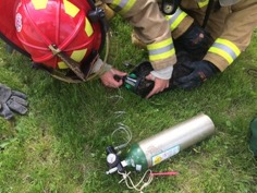 Firefighters rescued a cat and gave it oxygen after a fire in the 200 block of West Cottage Avenue on Tuesday, May 16, 2017. (Courtesy of St. Paul fire department)