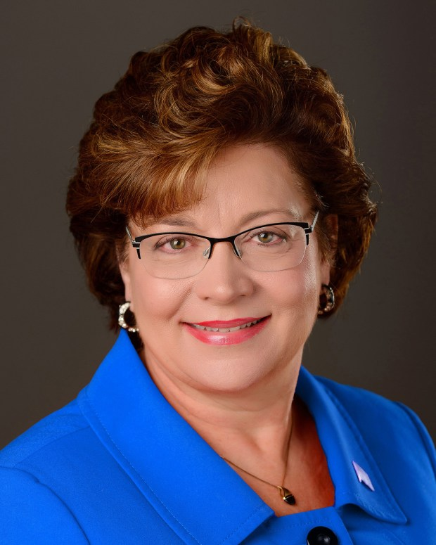 Undated courtesy photo of State Sen. Carla Nelson, R-Rochester, from the 2017-18 Minnesota Legislative session. (Courtesy of the Minnesota Senate)