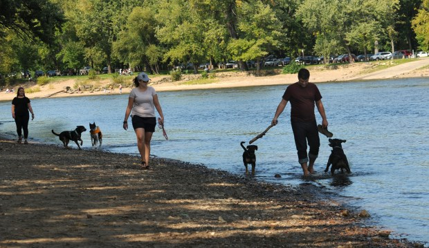 Minnehaha Off-Leash Dog Park