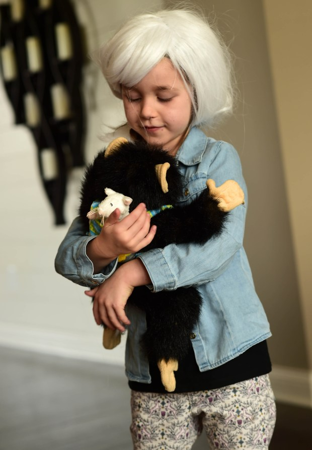 "Prewitt Anderson, 5, holds her chimpanzee companion ""Jubilee"" which goes everywhere with her, as she wears her Jane Goodall outfit, at her Bayport home, Monday, Nov. 13, 2017. Anderson is excited about her upcoming part as Lulu in the musical ""Waitress"" at the Opheum Theater. (Scott Takushi / Pioneer Press)"