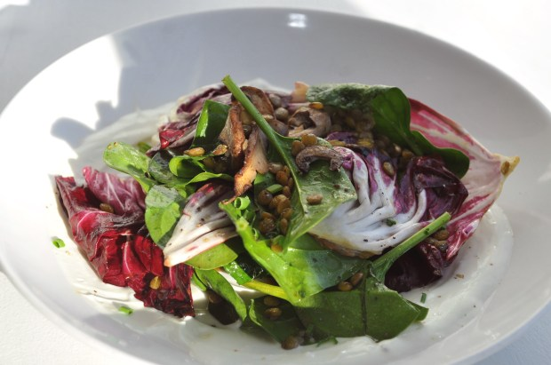 Lentil salad with spinach, roasted mushrooms, radicchio, yogurt sauce, pomegranate molasses vinaigretter dressing is $9 at Salty Tart in the old Heartland building at 589 E. 5th Street in St. Paul. The restaurant is open for breakfast and lunch every day is run by Michelle Gayer, owner and chef. (Ginger Pinson / Pioneer Press)