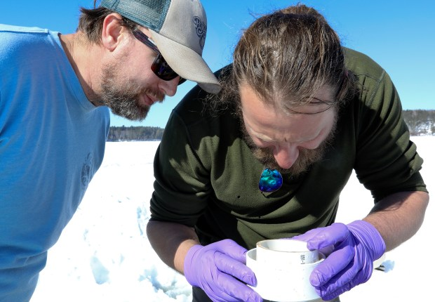 Andy Bramburger of the Natural Resources Research Institute (left) and Ted Ozersky of the Large Lakes Observatory examine zooplankton Ozersky had just collected from Side Lake on Thursday, March 1, 2018. (Steve Kuchera / Forum News Service)