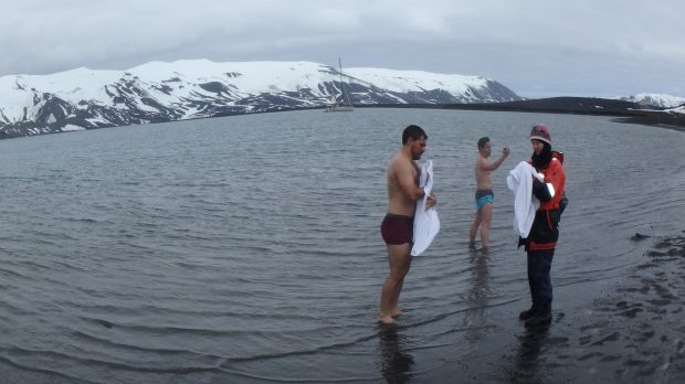 Going for a swim at Deception Island. (Courtesy of Richard Weil)