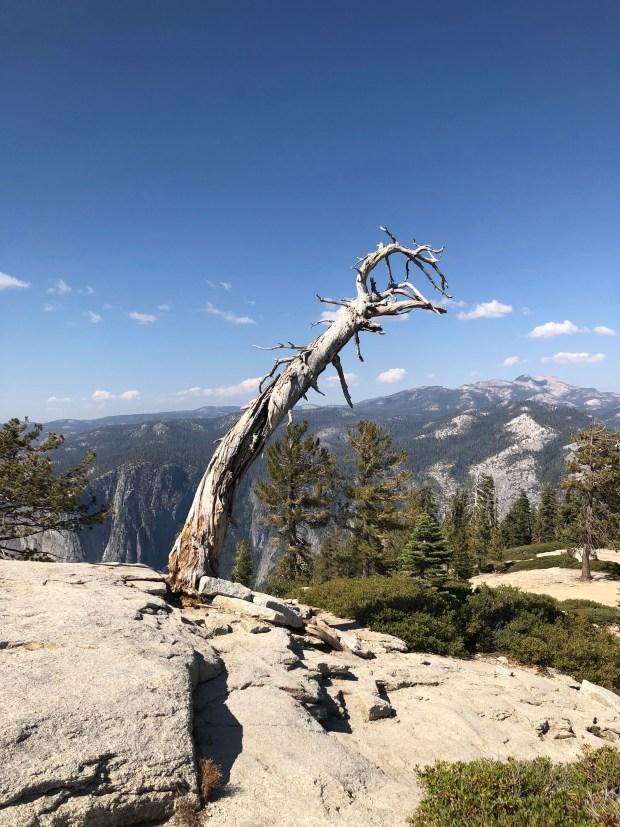 For hikers, Yosemite National Park rewards originality – Twin Cities