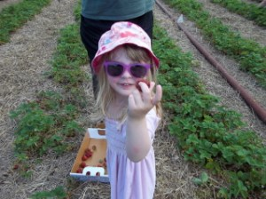 daughter strawberry picking