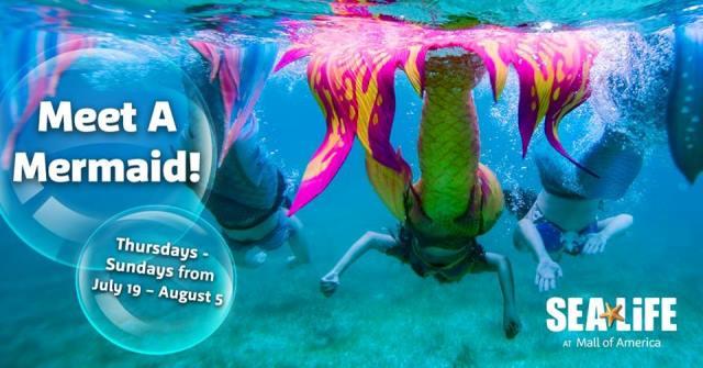 Sea Life Mall of America Memaids