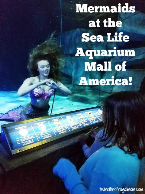 Sea Life Mall of America Mermaids
