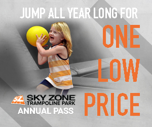 Sky Zone Twin Cities