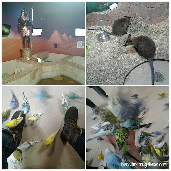 Seaquest animals