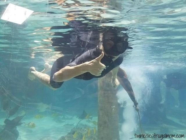 Seaquest Roseville Snorkeling
