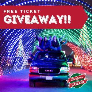 Christmas in Color GIVEAWAY