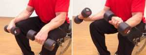 Reverse Wrist Curl With Dumbbells