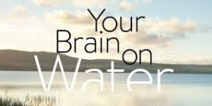 yourbrainonwater
