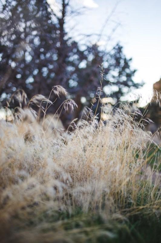CC-Smith-Rock-Alternative-Engagement-Photography-TwistedAisleWeddings-109