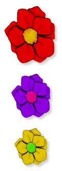 3 Colored Flowers