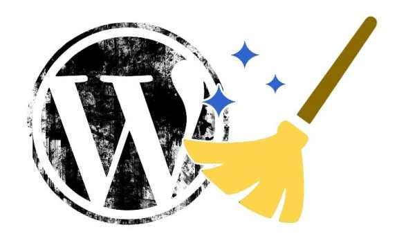 WordPress logo and broom