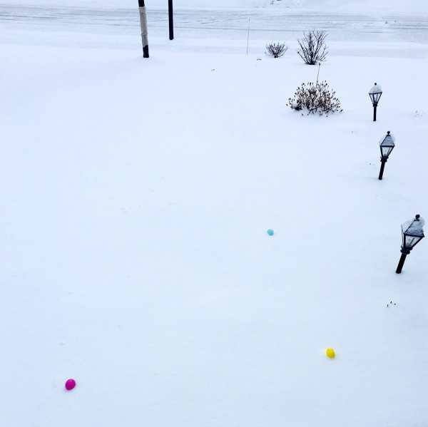 Easter eggs on the snow.