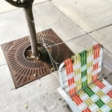 Chair Zip Tied to Tree