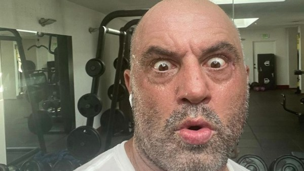 Joe Rogan UFC
