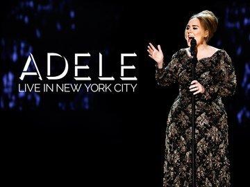 adele newyork concert