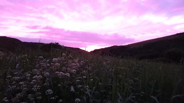 Sunset Pentire