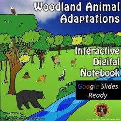 Woodland Animals Adaptations for Google Slides