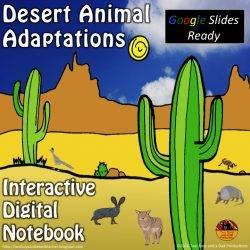 Desert Adaptations for Google Slides