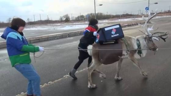 Video-+Reindeer+audition+for+Domino's+Pizza+delivery+job+in+Japan.jpeg