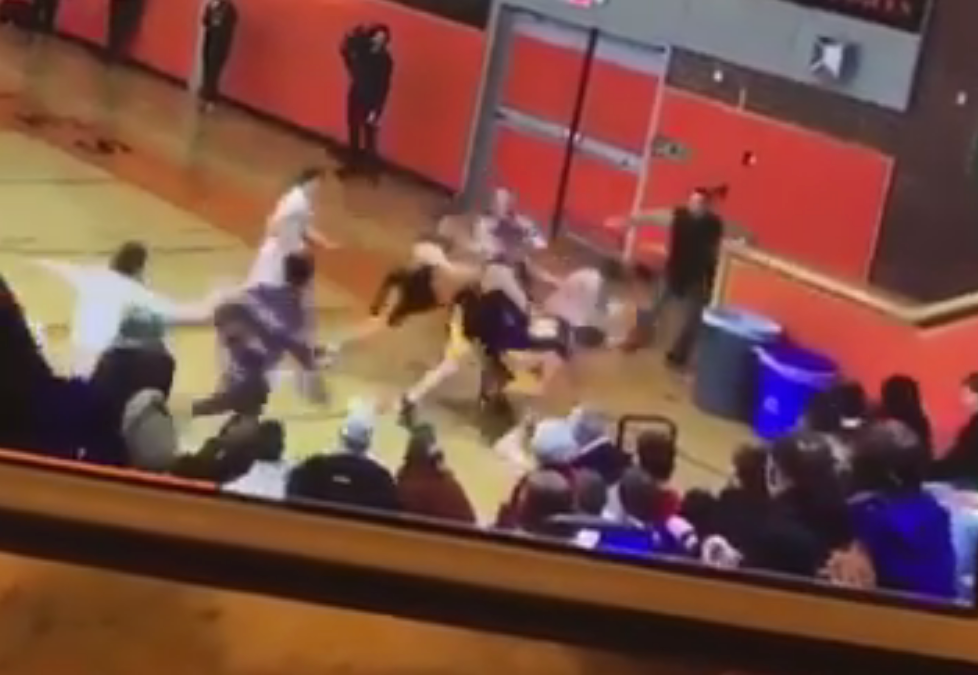 We've Got a Section 2 Basketball Fight (And Averill Park Has a New Fan)