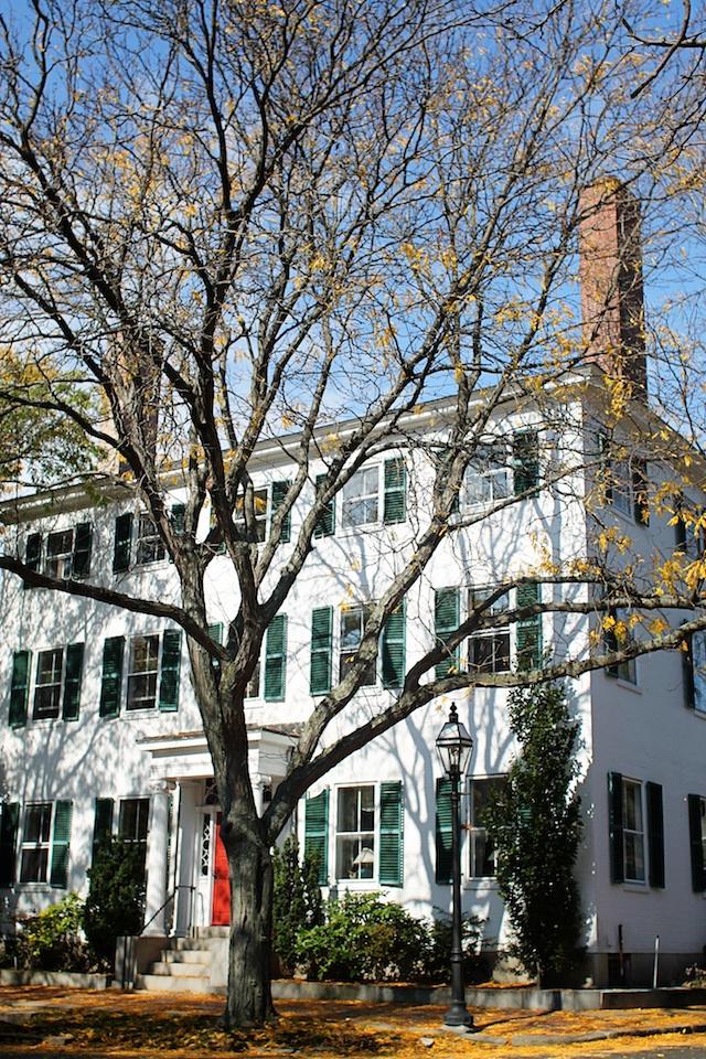 chestnut street house blog