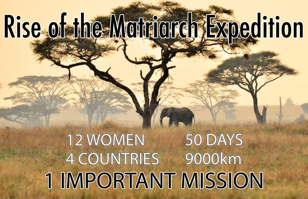 All About The Rise Of The Matriarch Expedition Two Dusty Travelers