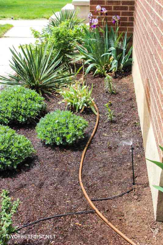 DIY drip irrigation system for a home