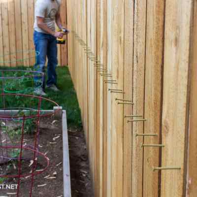 Install Cedar Pickets on a Fence