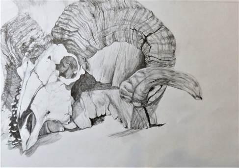 Sarah art 19