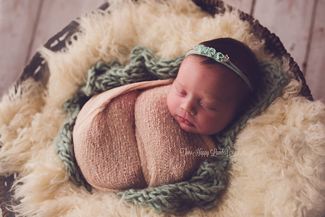 20160512-Santa-Maria-Professional-Newborn-Photos-Baby-in-Basket-Central-Coast-Girl-California
