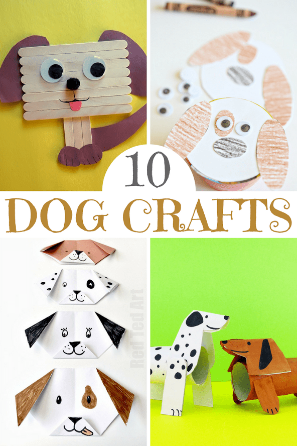 Cute Pet Craft Projects