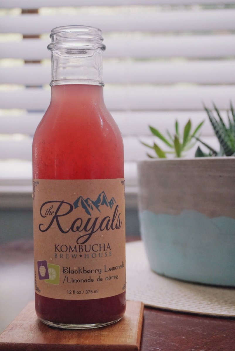 vegan travel kombucha