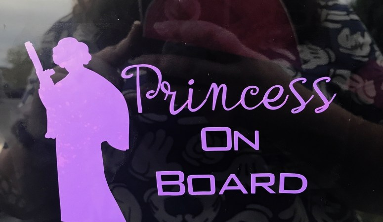 DIY Princess On Board Vinyl Decal Using A Cricut